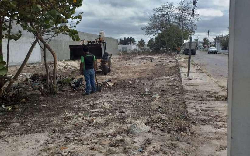 Autoridades intervendrán para erradicar la contaminación en terrenos baldíos
