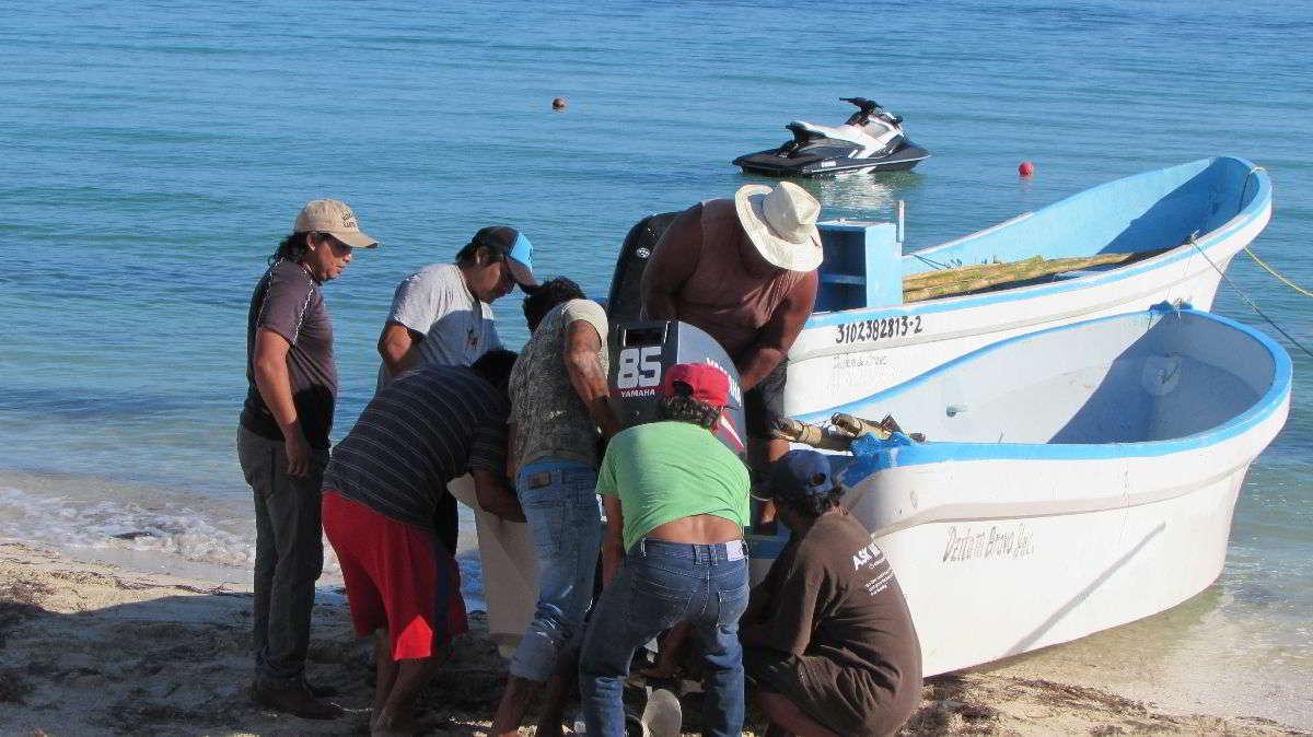 Consecuencias de la pesca furtiva