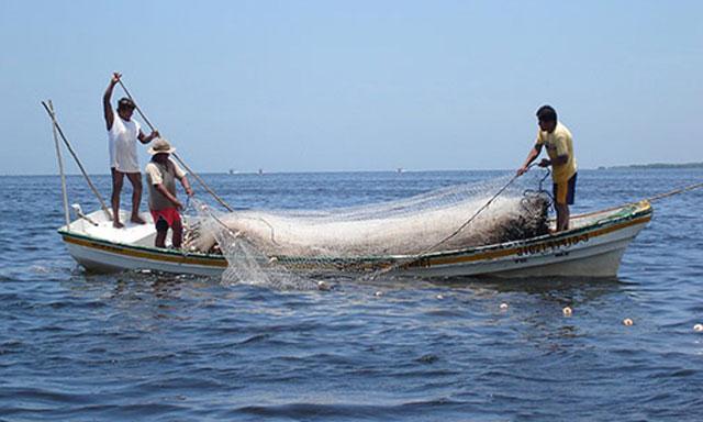 Hoy se reanuda la pesca pero solo por 2 días