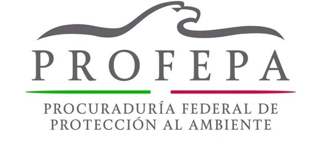 Clausura PROFEPA predio y obras de cambio de uso de suelo en Chelem,  municipio de Progreso, Yucatán