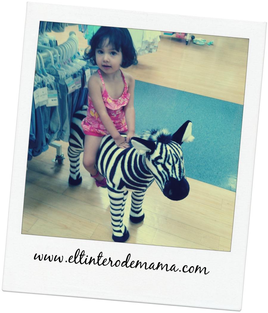 miercoles mudo montando la zebra