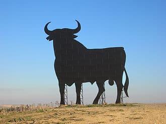 corridas de toros ¿FIESTA NACIONAL o VERGÜENZA NACIONAL?