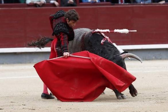 Referéndum sobre las corridas de toros