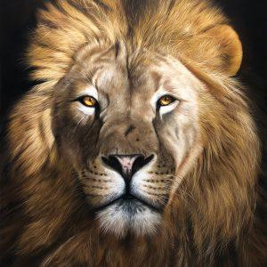 quadro Leão - 80 x 100 cm - Elton Brunetti