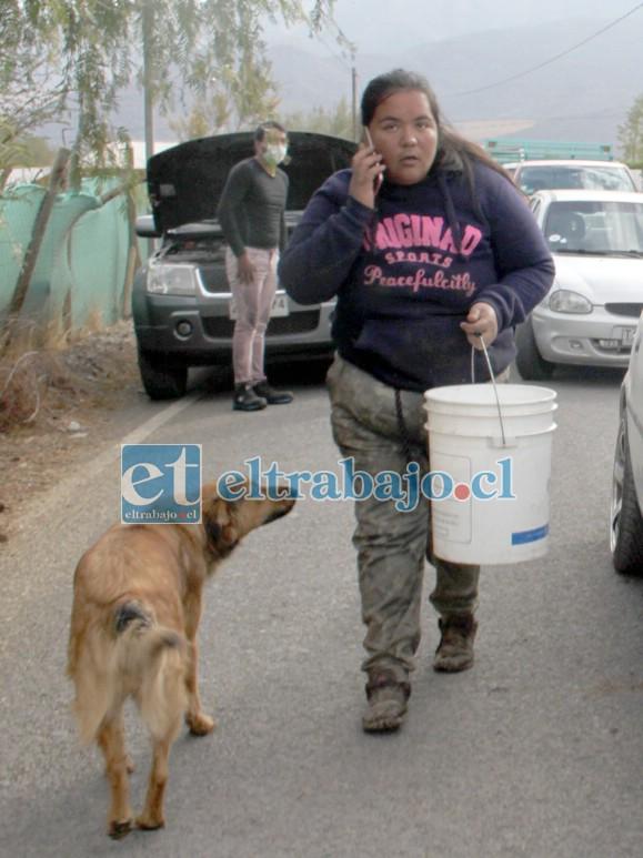 VECINOS SOLIDARIOS.- Las cámaras de Diario El Trabajo captaron a esta vecina haciendo su labor voluntaria en beneficio de Víctor González y su propiedad.