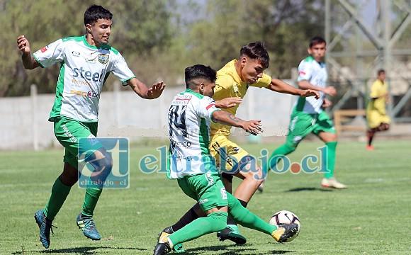 Se confirmó que Trasandino y ningún equipo de la Tercera División competirá este año en la Copa Chile.