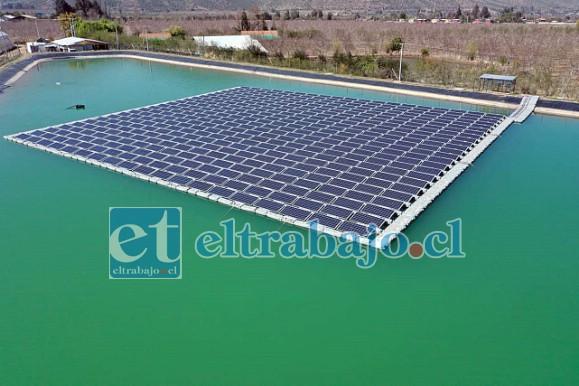 El proyecto, desarrollado por la empresa chilena Solarity, se emplaza sobre 1.500 metros cuadrados del tranque de la agrícola Mataquito-Hortifrut, permitiendo abastecer el 100% de sus necesidades energéticas.