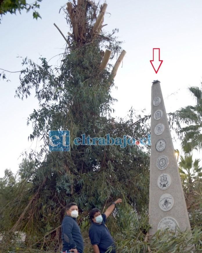 MONUMENTO DAÑADO.- La flecha señala la parte del obelisco que está dañada, Guajardo asegura que no ameritaba hacer esta tala.