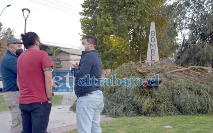 QUEDARON PLOP.- Empleados de la Dipma no lograron explicar las razones de hacer esta tala sin consultar a los cuidadores del centenario árbol.