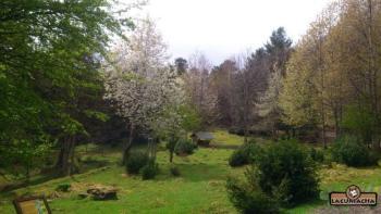Lacuniacha parque faunístico