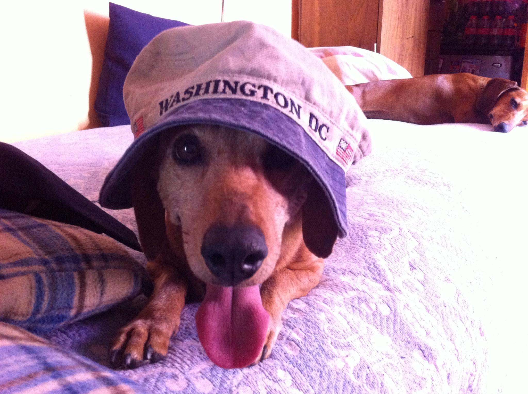 Servicio Santa Dron - Boligan