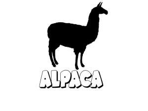 logo_alpaca_web