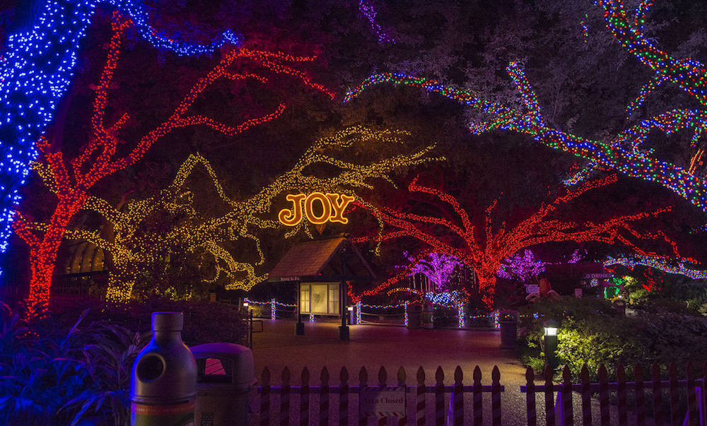 Houston Zoo Lights Christmas