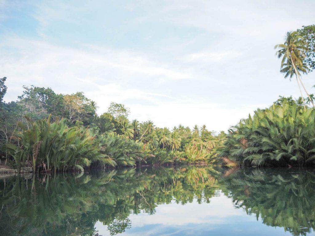 Que ver y hacer en Bohol