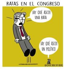 Ratas en el congreso