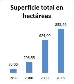 Superficie plantada de Cabernet Franc