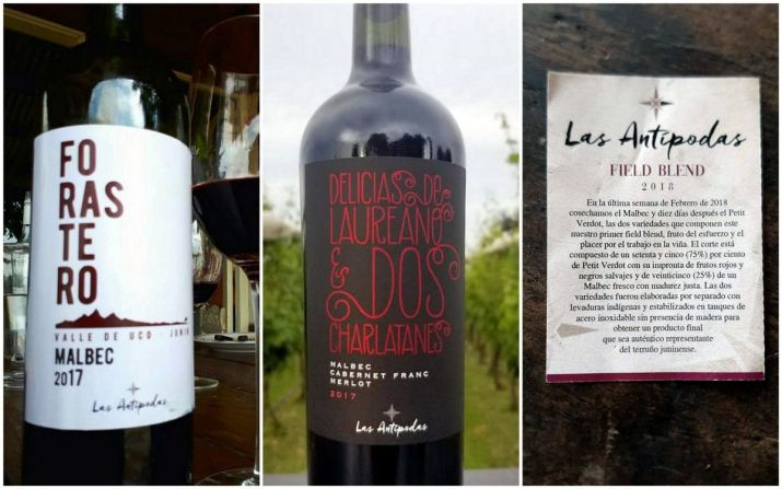 Los vinos de Finca Las Antípodas