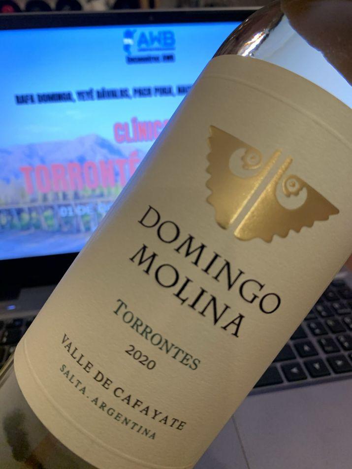 Clínica de Torrontés Calchaquí: Domingo Molina Torrontés