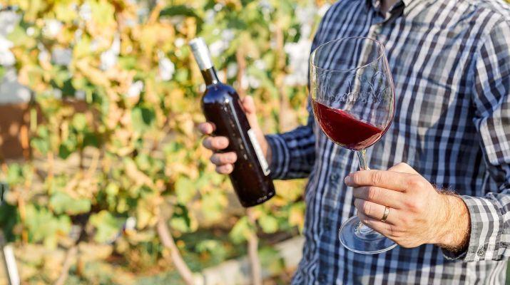 El vino como negocio