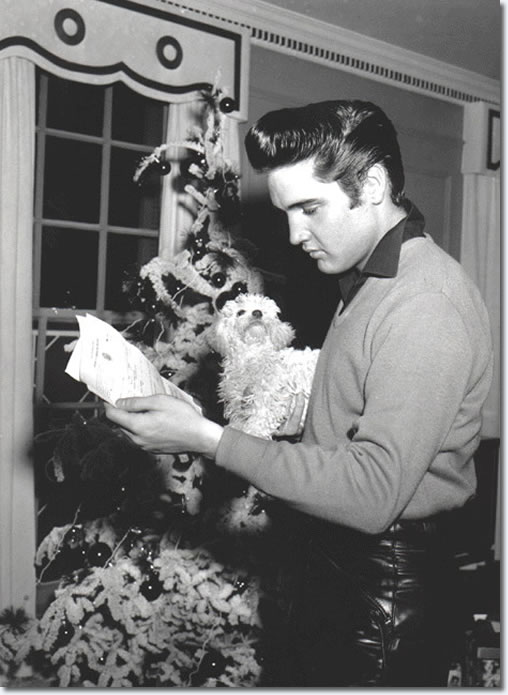 Elvis pictured at Graceland aftter picking up his draft notice. The christmas tree is in the background and It looks to be dark outside.The poodle belonged to Gladys Presley and was named 'Duke' after John Wayne.