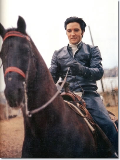 Elvis Presley : Horseback riding at Graceland : February 69, 1968.