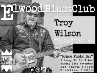 Troy Wilson at Elwood Blues Club