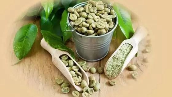 """Os grãos de café verdes e os produtos rotulados como """"extratos de café verde"""" provêm de grãos de café que não foram assados ou altamente processados."""