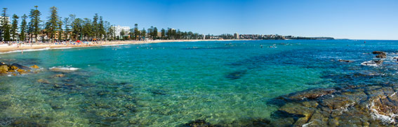 manly pano