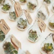 1000 Ideas About Plant Wedding Favors On Emasscraft Org