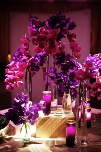 1000 Images About Purple Cymbidium Orchid Wedding On Emasscraft Org