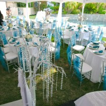 1000 Images About Turquoise And Silver Bat Mitzvah On Emasscraft Org