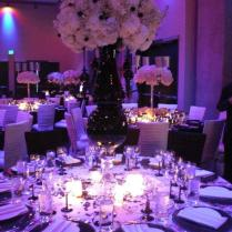 Cheap Purple Wedding Decorations On Decorations With Wedding Cheap