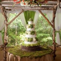 Elegant Rustic Country Backyard Wedding In Tennessee 2184582