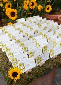 Escort Cards, Place Cards, Wedding Seating Chart, Diy Wedding
