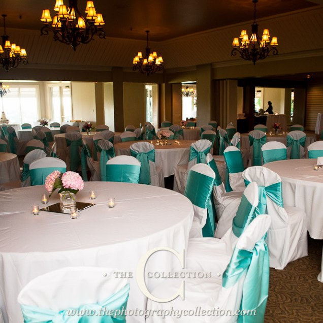 Janeika's Blog White Polyester Banquet Chair Covers And Tiffany