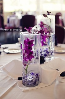 Wedding Orchids For Wedding Centerpieces