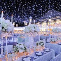 Wedding Themes Winter Wonderland Amazing