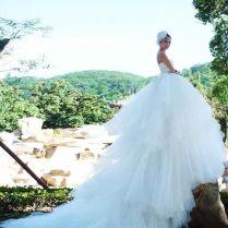 1000 Ideas About Huge Wedding Dresses On Emasscraft Org