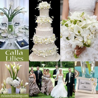 1000 Images About Calla Lily Wedding Theme On Emasscraft Org