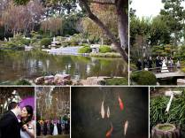 1000 Images About Long Beach Wedding Locations On Emasscraft Org