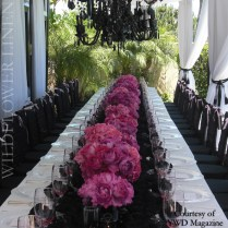1000 Images About Pink, Black & Glam! On Emasscraft Org