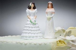 Lesbian Wedding Cake Ideas Wedding Cake