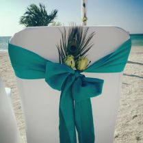 Peacock Beach Wedding, Peacock Wedding Theme, Beach Weddings With