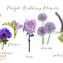 Purple Wedding Flowers Purple Wedding Flowers1