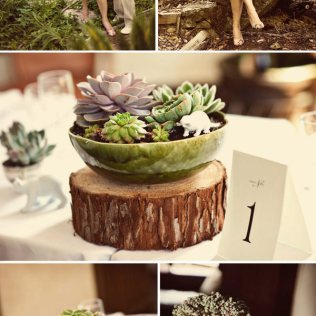 Rustic Backyard Wedding Centerpiece Succulents And Rustic Wood