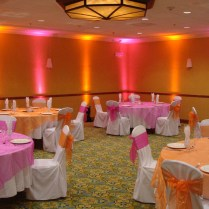 1000 Ideas About Orange Wedding Decor On Emasscraft Org
