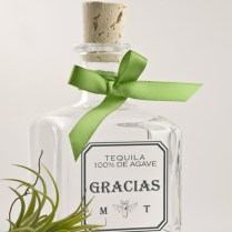 Tequila Mexican Wedding Favors