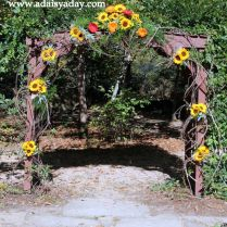 17 Best Images About Grapevine Wedding Arbor