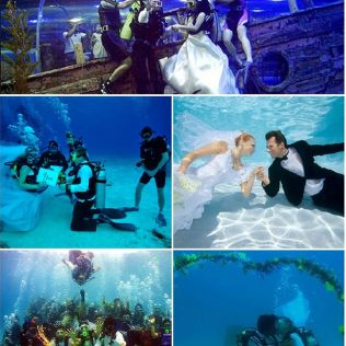 Tbdress Blog The Concept Of Under The Sea Wedding Theme