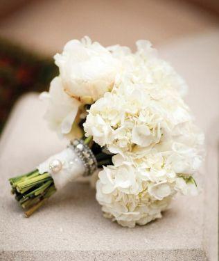 141 Best Images About Hydrangea Wedding Ideas On Emasscraft Org